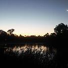 Laratinga Wetlands, Mount Barker, South Australia by Michael Humphrys