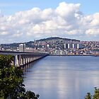 View from Fife by dgscotland