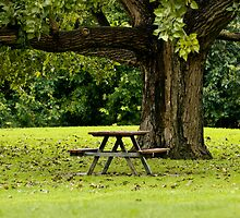 ~Come sit with me~  by Nina  Matthews Photography