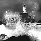 Force 6 Corbiere by Gary Power