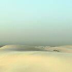 Monahans White Sand Hills ~ Desert Storm  by Carla Jensen