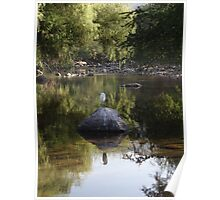 Rock And Bird With River Scape - Roca Y Ave Con Paisaje Fluvial Poster