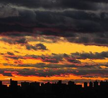 Sunset silhouette in New York City  by Alberto  DeJesus