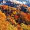 THE CHIMNEY TOPS,AUTUMN SNOW* by Chuck Wickham