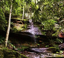 Strickland Falls, Central Coast NSW by Tam  Locke