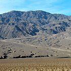 Death Valley by Candi  Controulis