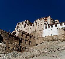 ladakh palace by vishwadeep  anshu