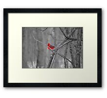 A Spot of Red in the Land of Black and White Framed Print