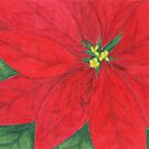 Christmas Poinsetta by Rhonda Walker