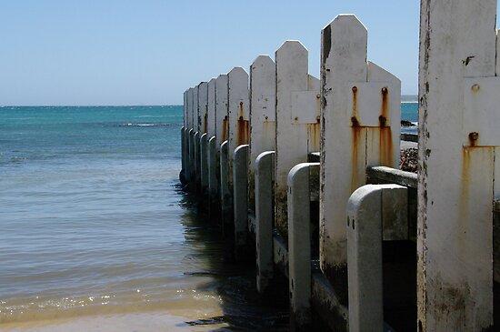 Fishing Jetty - Cape Conran by Alison Howson