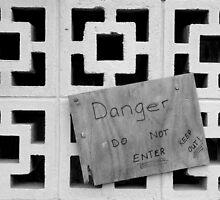 DANGER! by CapturedByKylie