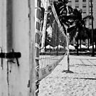 Beach volley ball Net - Miami Beach by adlad