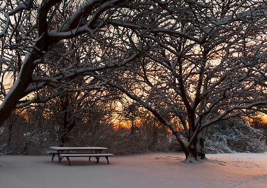 Quiet moment before dawn by Yelena Rozov