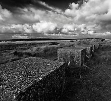 World War Two Coastal Defences by Darren Burroughs