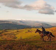 Horseriding in Wales by Steve  Liptrot