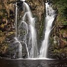 Posforth Gill waterfall by Dave Milnes