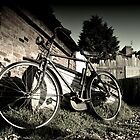 Bicycle by Tony Hadfield