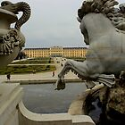 Schonbrunn Palace from Behind the Fountain by rsangsterkelly