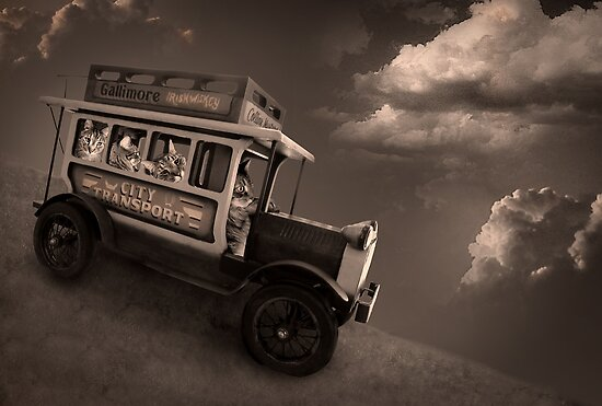 The Tabbytown Transport by Christina Brundage