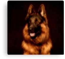 German Shepherd Portrait Canvas Print