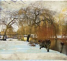 Winter by the riverbank by Ulla Vaereth
