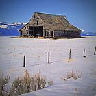 Old Barn - Cascade, Idaho by Rich Summers