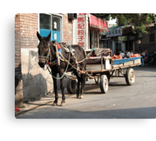 Beijing 2006 - Rural China in the city Canvas Print