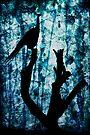 Obsidian Realm by Andrew Paranavitana