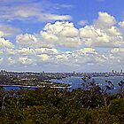 North Head Manly - The view by miroslava