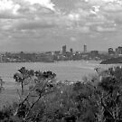 North Head Manly - Black & white Sydney by miroslava