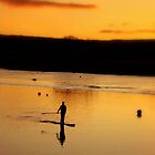 Golden Paddler by Charmiene Maxwell-batten