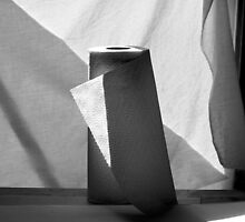Composition with Paper Towels and Sunlight by Lisa Cook