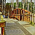 The Painted Bridge by Scott Mitchell