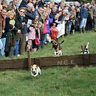 Terrier Racing by Pete  Burton