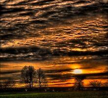 Sunset over Williow Park Jan 2012 by Nigel Butterfield