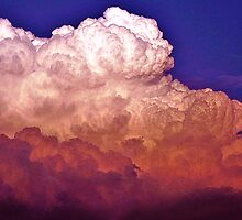 Cumulus Cloud  by Vince Scaglione