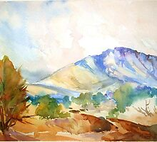 Magaliesberg Mountains 2 by Maree  Clarkson