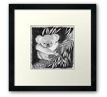 Koala at Night Pencil Sketch Framed Print