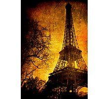 Esthetic Luster Photographic Print