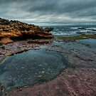 Rockpool by Jason Ruth