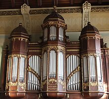 School Organ by karina5