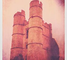 Donnington Castle Iphone by James Taylor