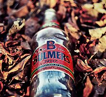 Bulmers (2) by AndrewBerry