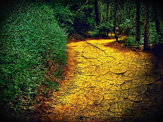 "The cracked earth below our feet (or ""The yellow brick road"") by Scott Mitchell"