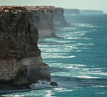 Great Australian Bight 50 K from WA  198208050023 by Fred Mitchell