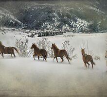 Loose Horses by Kay Kempton Raade