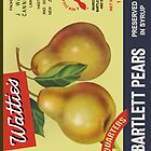 Wattie's Pears  by Darian  Zam