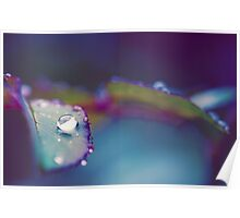 Perfect Droplet Poster