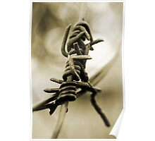 Barbwire  Poster