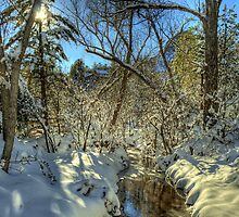 """ Snow, Sun, and Shadows"" by Diana Graves Photography"